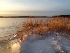 Skärgårdsstrand vinter