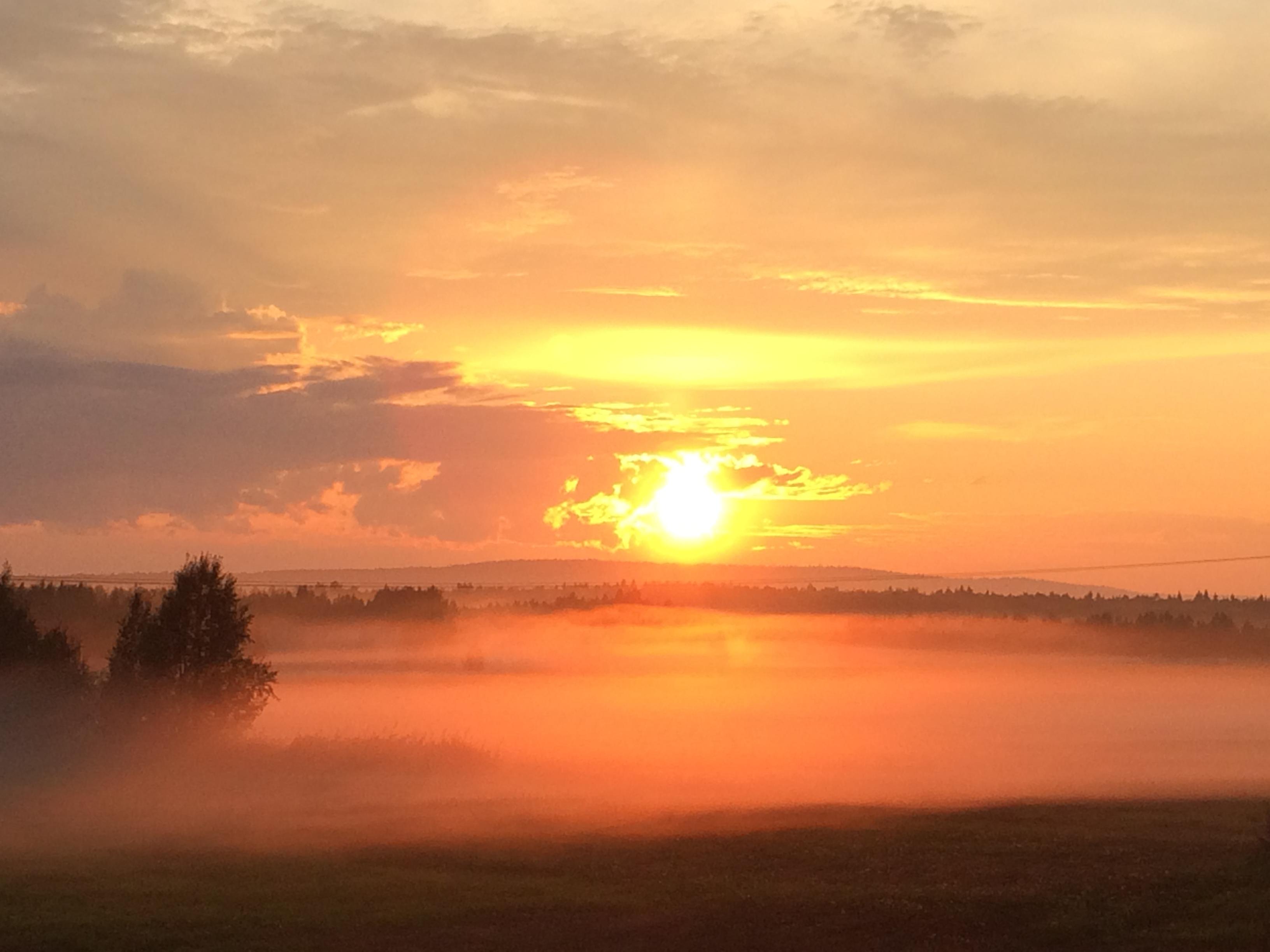 Solnedgång dimma