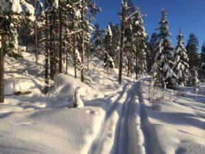 Vinterbild Byberget