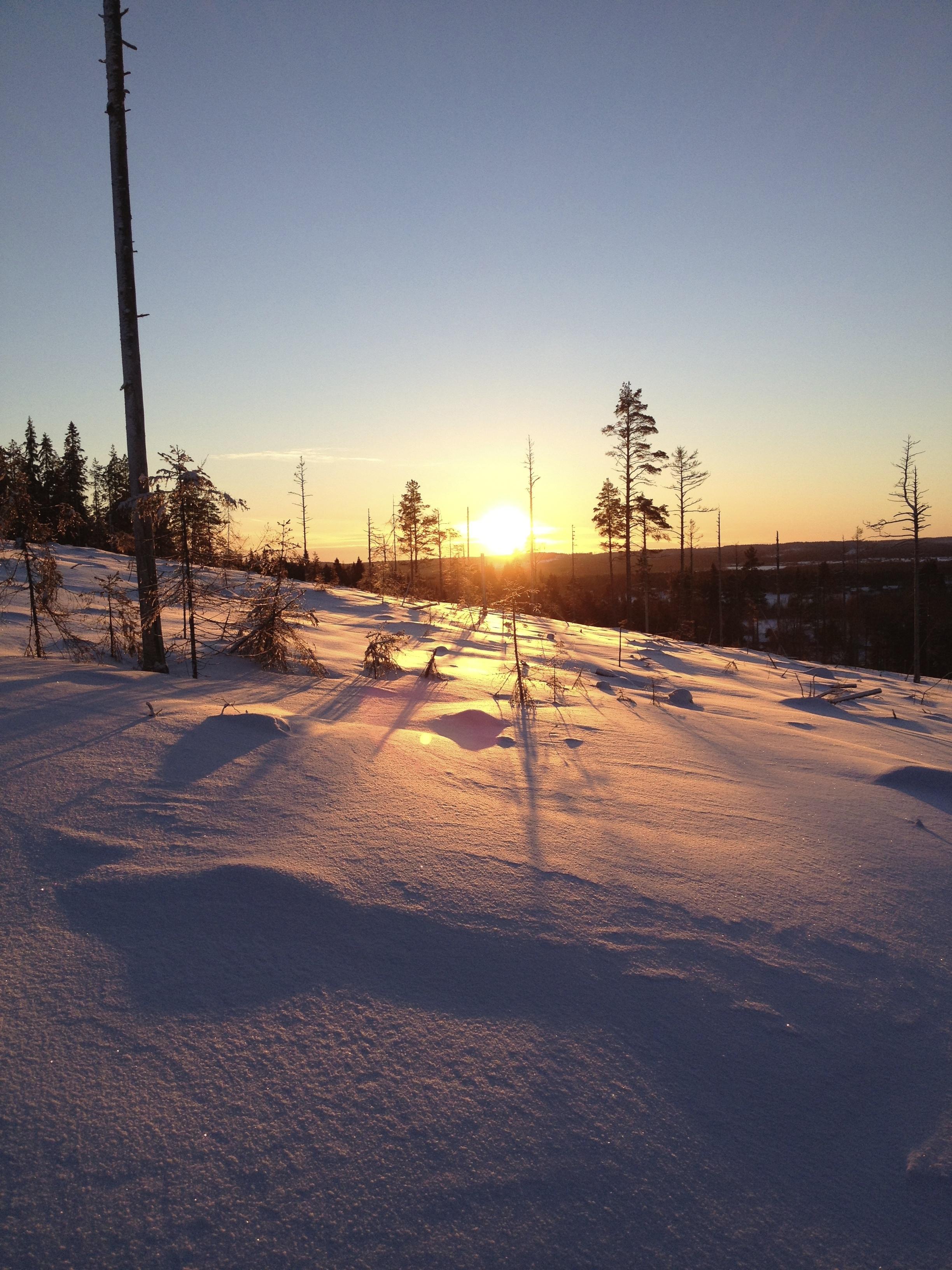 Vinterbild berget